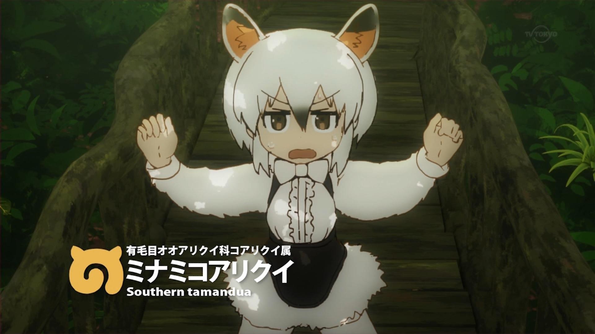 ミナミコアリクイ(第2話画像)