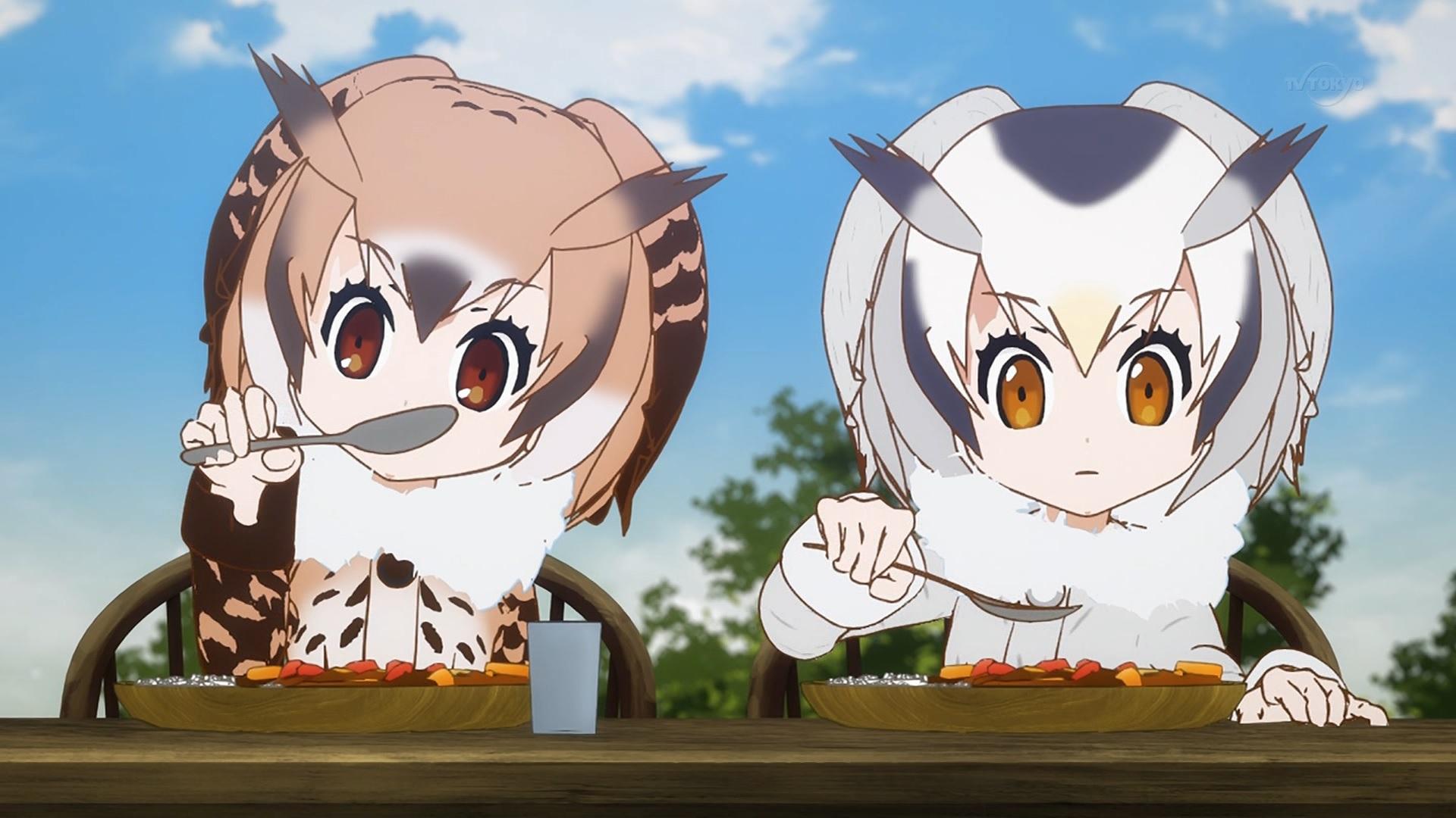 カレーを食べるワシミミズクとアフリカオオコノハズク(第7話画像)