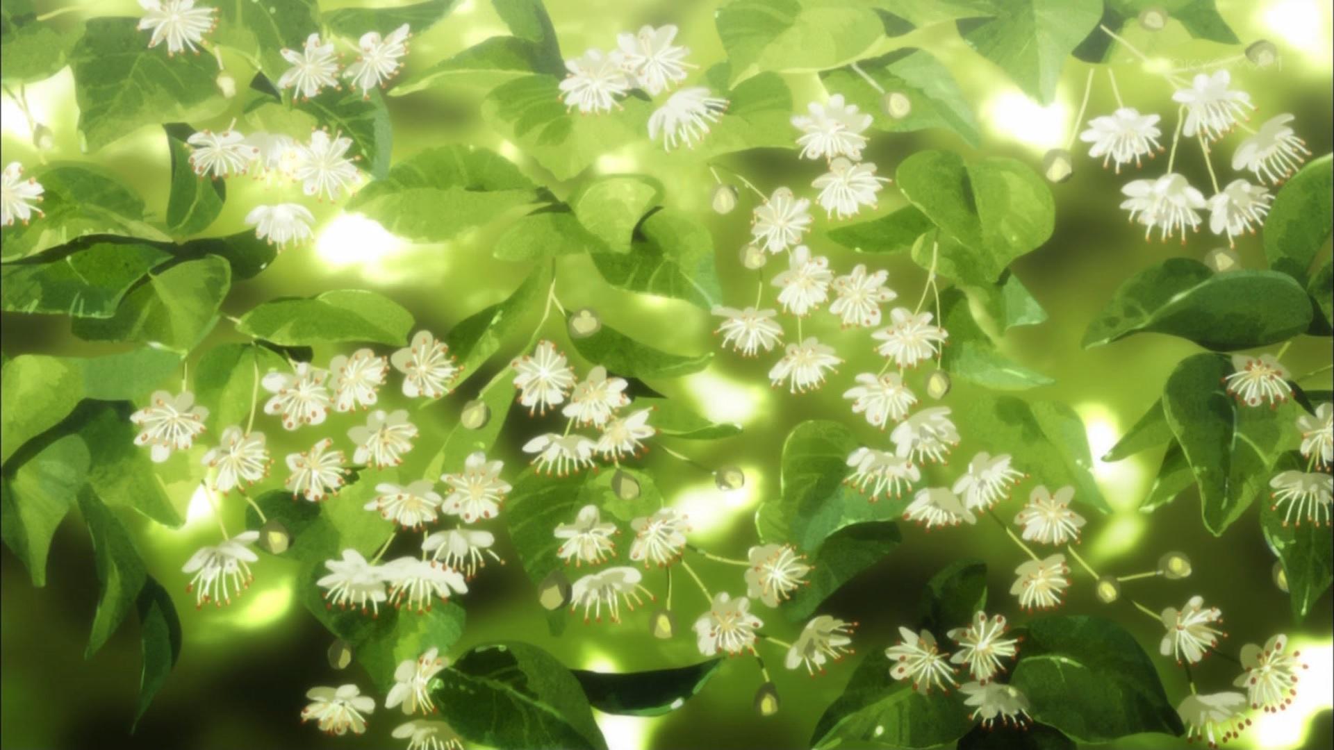 ネヴィンの花